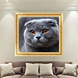 MEXUD-DIY Stitch Craft Needlework with Cat Mosaic Diamond Embroidery Diamond Painting for Home Decor