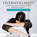 Overwhelmed? Effective Ways To Overcome Adrenal Fatigue: The Adrendal Syndrome Explained | Nathaniel Cross
