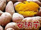 新芋(2016年産) 訳あり 鹿児島県産 安納芋 「安納紅」 サイズ混合 1箱:約10kg入り