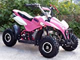 Mini Quad ATV Kinderquad 49 cc Powerquad 49ccm 2012 NEU Picture