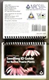 img - for Central Region Seedling ID Guide for Native Prairie Plants book / textbook / text book
