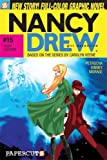 img - for Nancy Drew #15: Tiger Counter (Nancy Drew Graphic Novels: Girl Detective) book / textbook / text book