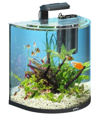 tetra-aquaart-explorer-line-aquarium-komplett-set-60-liter-anthrazit-gewolbte-frontscheibe-langlebig
