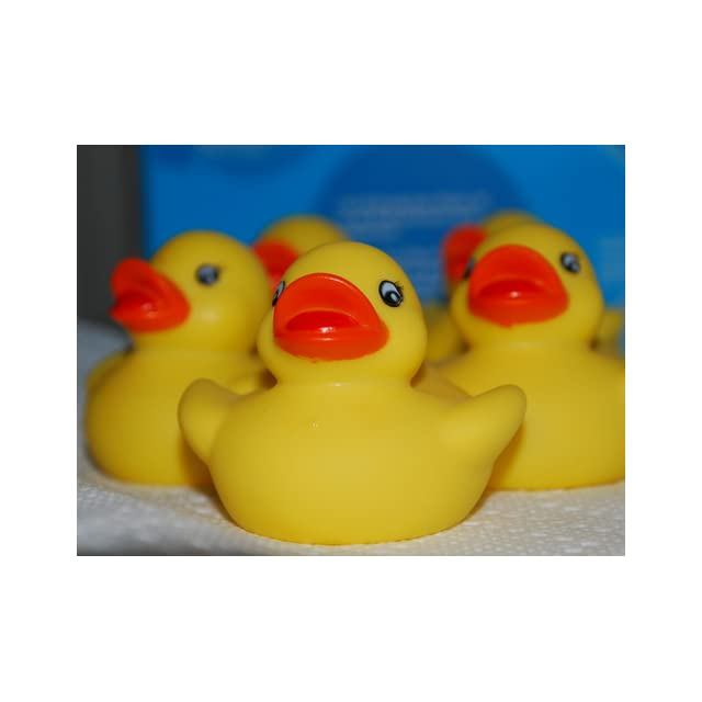 One Dozen (12) Rubber Duck Ducky Duckie Baby Shower Birthday Party Favors Toys & Games