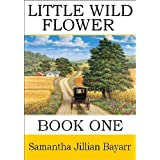 Little Wild Flower, Book 1 (Little Wild Flower, An Amish Christian Romance) ~ Samantha Jillian  Bayarr