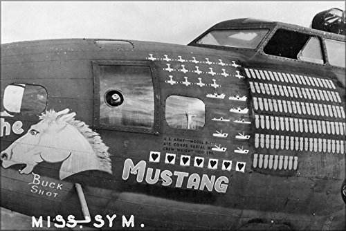 24x36 Poster; B-17F-25-Bo Flying Fortress 41-24554 B-17 The Mustang 1943