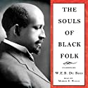 The Souls of Black Folk (       UNABRIDGED) by W. E. B. Du Bois Narrated by Mirron Willis