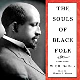 img - for The Souls of Black Folk book / textbook / text book