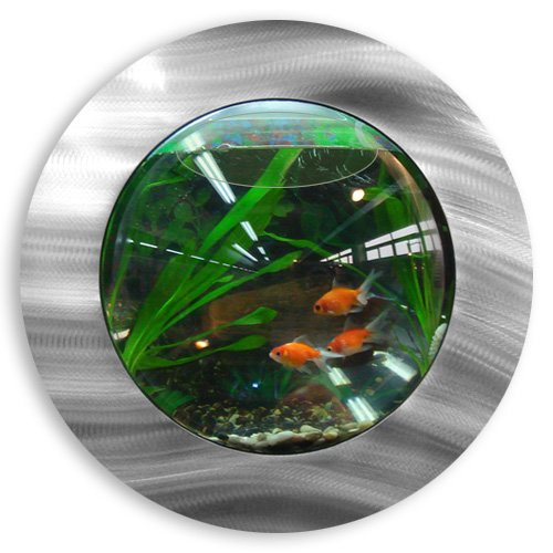 ... Wall Mounted Fish Tank Aussie Aquariums Wall Mounted Aquarium - Mini