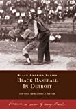 img - for Black Baseball in Detroit (Black America: Michigan) by Larry Lester, Sammy J. Miller, Dick Clark (2000) Paperback book / textbook / text book