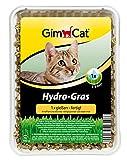 GimCat Hydro-Gras, 2 Packungen (2 x 150 g)