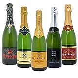 本格シャンパン製法の極上の泡5本セット((W0A5A2SE))(750mlx5本ワインセット)