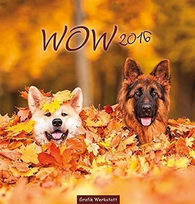 WOW 2016: Hundefreuden auf 12 Seiten, Postkartenkalender