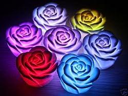 EZ LIFE LED Roses (Pack of 6)