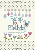 img - for Bump to Birthday, Pregnancy & First Year Baby Journal (American English version) book / textbook / text book