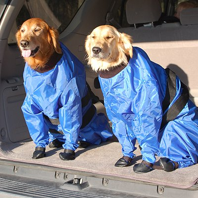 Clearance Sale 1 Doggie Raincoat And Shed Protector