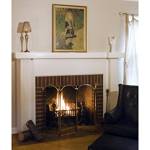 UniFlame 4 Panel Brass Filigree Fireplace Screen (Blue Rhino Fireplace Screen compare prices)