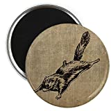 CafePress Vintage Squirrel Glider Magnet - Standard Multi-color