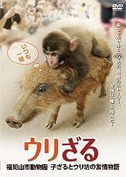 ウリざる 福知山市動物園