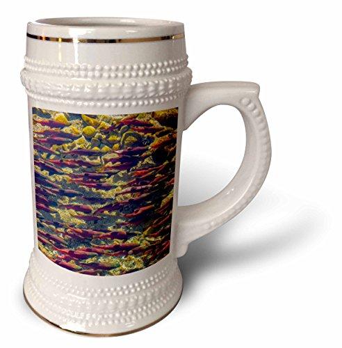 danita-delimont-canada-kokanee-salmon-head-upstream-british-columbia-canada-22oz-stein-mug-stn-22669