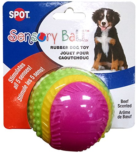 "Ethical Pets Sensory Ball Dog Toy, 2.5"" Review"
