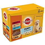 Pedigree Puppy Chunks in Jelly Selection - Pouch (8x150g)