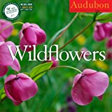 img - for Audubon Wildflowers Calendar 2015 book / textbook / text book