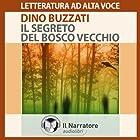Il segreto del bosco vecchio | Livre audio Auteur(s) : Dino Buzzati Narrateur(s) : Claudio Carini