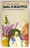 img - for Small is Beautiful: Economics as if People Mattered Paperback - August, 1975 book / textbook / text book