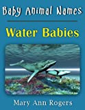 Baby Animal Names: Water Babies (What Am I Series)