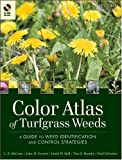 img - for Color Atlas of Turfgrass Weeds book / textbook / text book