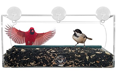 Grateful Gnome - Long Window Bird Feeder - Clear Acrylic House for Small or Large Wild Bird Like Finch and Cardinal - Best Unique and Unusual Window Bird Feeder Out There - Cool (Virtually Squirrel Pr
