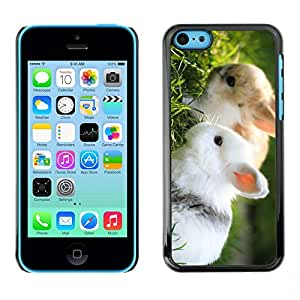 Omega Covers - Snap on Hard Back Case Cover Shell FOR Apple iPhone 5C - The Cool Chameleon