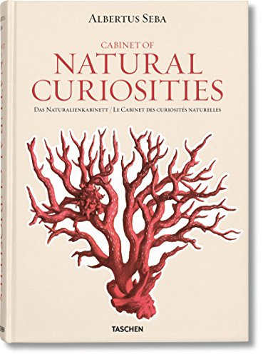 cabinet of natural curiosities pdf