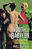 img - for A Youth in Babylon: Confessions of a Trash-Film King book / textbook / text book