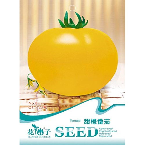 Yellow Sweet Tomato Seeds Garden Vegetables Fruit Plant 20pcs (Candy Corn Vine compare prices)