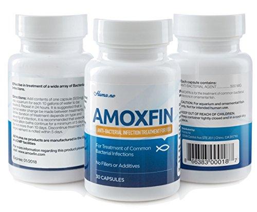 Doxycycline shop for Doxycycline for fish