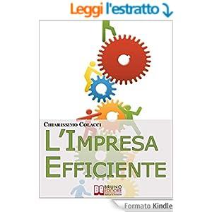 L'Impresa Efficiente. Strategie per Ottimizzare le Risorse e la Qualità dei Prodotti Aziendali. (Ebook Italiano - Anteprima Gratis)