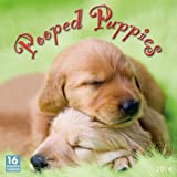 Pooped Puppies 2014 Wall (calendar)
