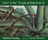 Here Is the Tropical Rain Forest (Web of Life)