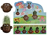 Grow Your Own - Grass head Just Add Water and Watch Them Grow - Ladies / Womans Perfect Ideal Christmas Present / Gift / Stocking Filler Ideal Gift for The Gardener