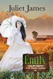 Emily - Book Two Come By Chance Mail Order Brides: Sweet Montana Western Bride Romance (Come-By-Chance Mail Order Brides 2)
