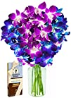 Madame Butterfly with Blue and Fuchsia Dendrobium Orchids and Scharffen Berger Chocolates (10 Stems)…