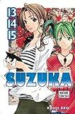 Suzuka 13/14/15