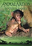 echange, troc Animal Nation - Nature's Babies: the Family in the Wild [Import anglais]