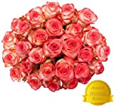 Flowers for Delivery - 50 RED & WHITE PREMIUM FRESH ROSES. FREE SHIPPING, FREE GIFT MESSAGE by Spring in the Air Luxury Roses.