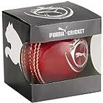 Puma Leather Cricket Ball Evo Speed 1...