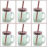 6er Set Vintage Trinkgläser mit Henkel und Deckel im Country Style inklusive einer K7plus Eiswürfelform