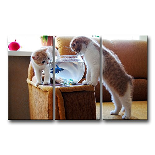 3 Piece Wall Art Painting Funny Cats Looking At Fish Tank Prints On Canvas The Picture Animal Pictures Oil For Home Modern Decoration Print Decor