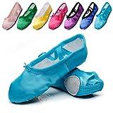 Kid Girl's Satin Practise Ballet Slipper Yoga Shoe,Blue,Toddler,10 M US